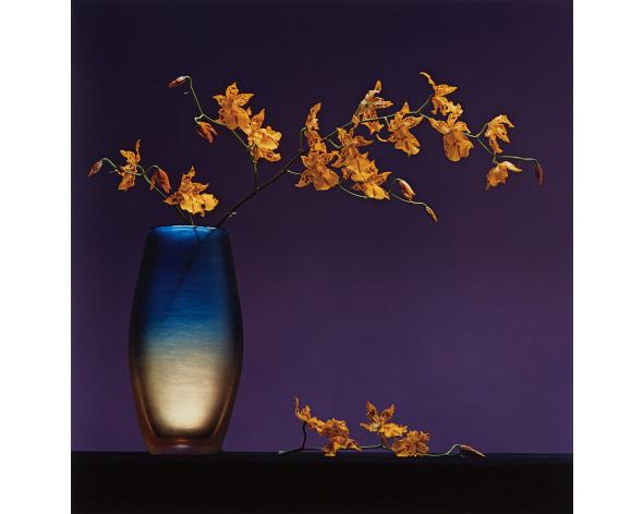 ROBERT MAPPLETHORPE Flowers in Vase, 1985