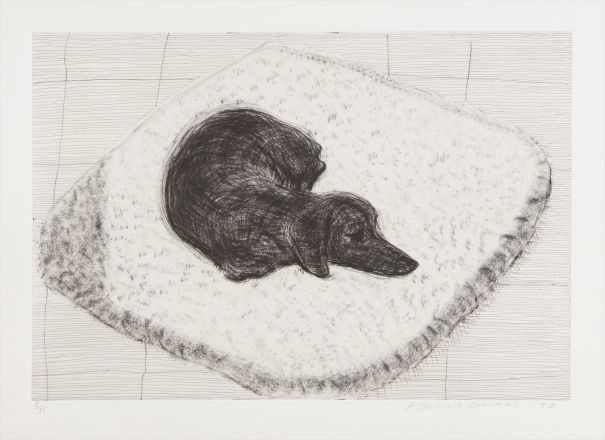 Dog Etching No. 12, from Dog Wall