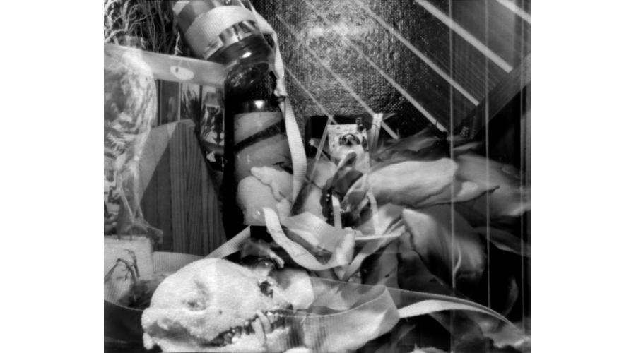 CAT GLENNON Untitled, 2016