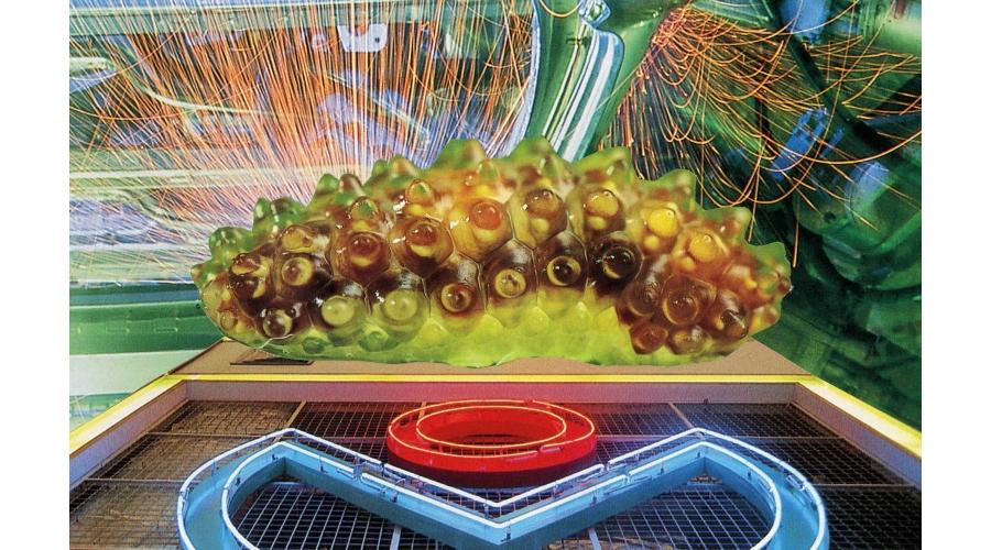 <b>PENNICOTT + FLEMING</b> <i>Electronic caterpillar</i>, 2015