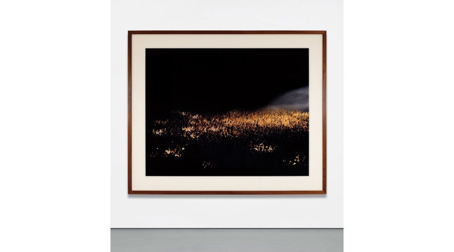ANDREAS GURSKY May Day II, 1998