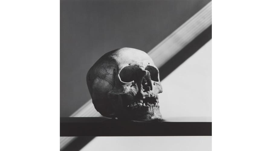 ROBERT MAPPLETHORPE Skull, 1988