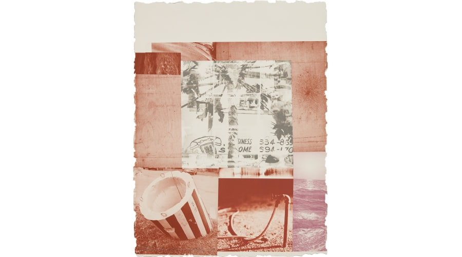 ROBERT RAUSCHENBERG Gray Gardens, page 6 from Rookery Mounds