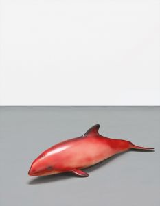 Carsten HöllerRed Baby Whale