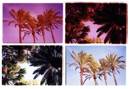 ANDY CLYDESDALE Sun Spots, 2017. Unique polyptych comprised of 4 hand printed chromogenic prints.