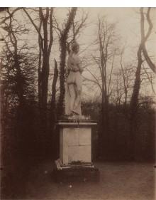 Eugène Atget - Versailles - Le Parc