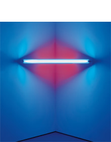 Dan Flavin - untitled