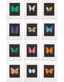 Damien Hirst - Butterfly Etchings