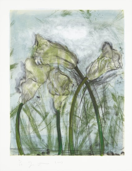 Jim Dine The History Of Gardening Series Plate Vi 2003 Phillips