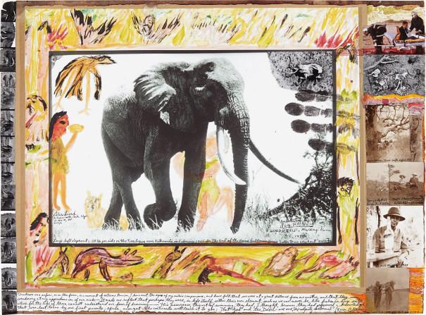 Large Bull Elephant c. 110 lbs. per side on the Tiva lugga near Kathemula in February