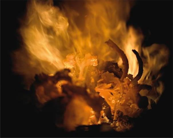 Incandescence from the crematorium series