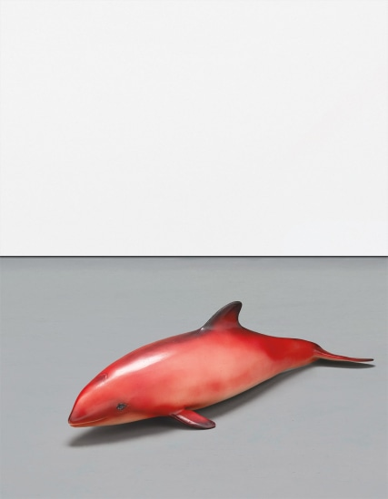 Red Baby Whale