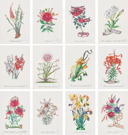 Surrealistic Flowers
