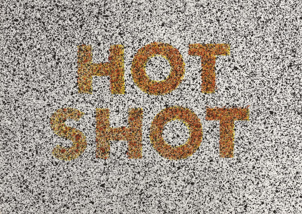Hot Shot, from 18 Small Prints