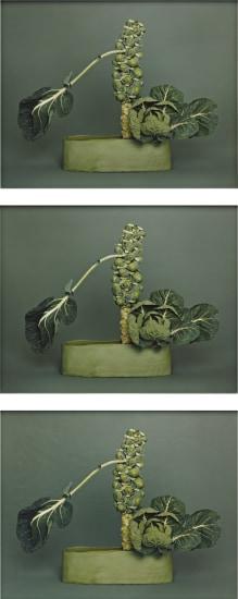 No-no Ikebana, Arranged by Haruko Takeichi, December 1, 2002