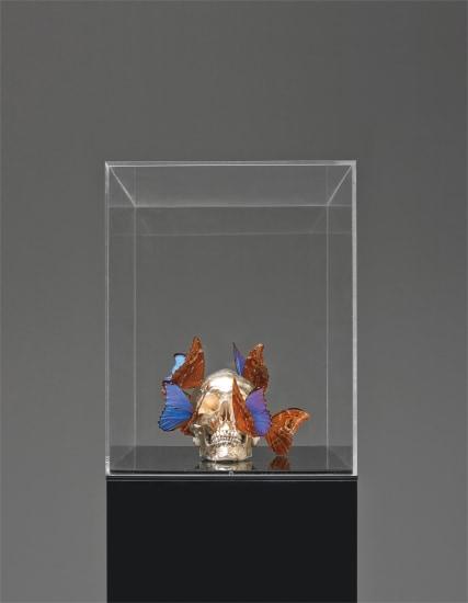 Vanité aux papillons (Vanity of Butterflies)