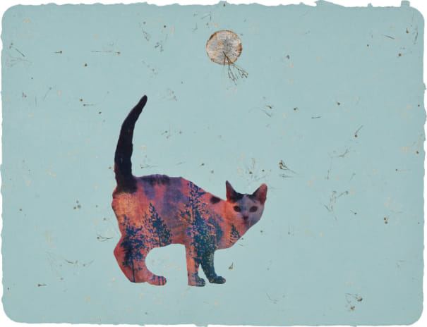 Here Kitty Kitty #20