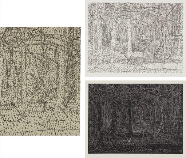 Black Landscape/White Landscape; Black Landscape/White Landscape; and Numerical Landscape