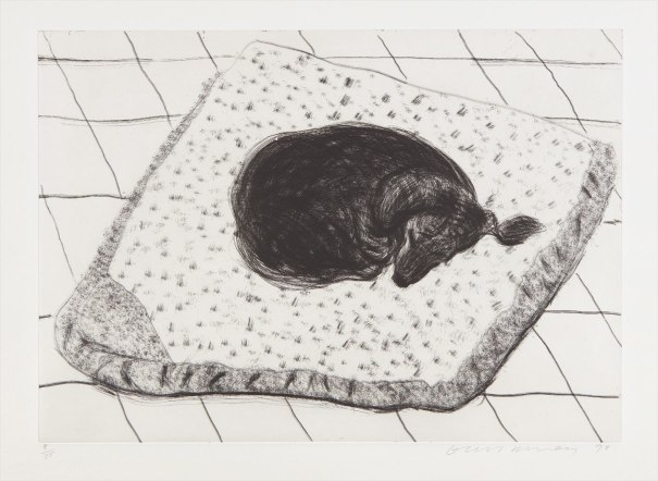 Dog Etching No. 15, from Dog Wall
