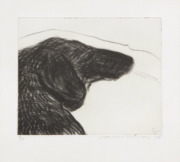 Dog Etching No. 6, from Dog Wall