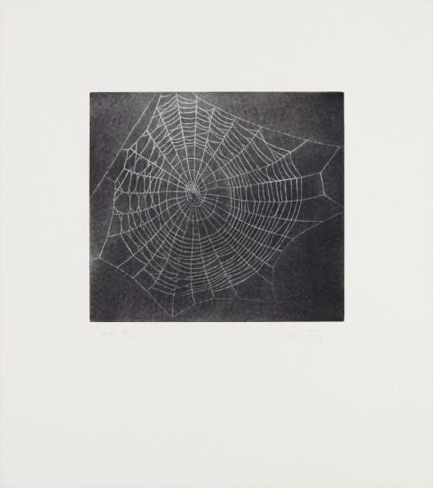 Untitled (Web 1), from MOCA portfolio