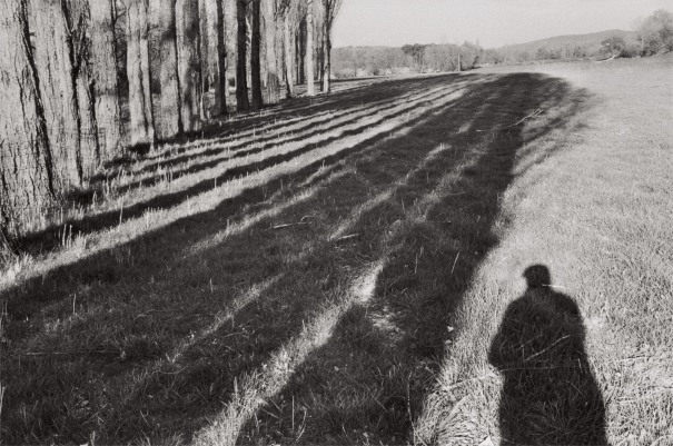 Near Céreste, Alpes-de-Haute-Provence, France (self-portrait)