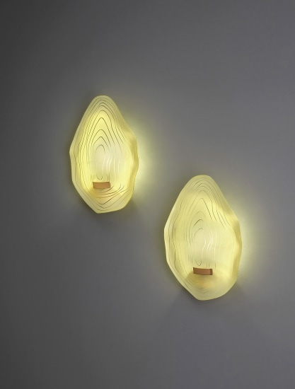 Pair of rare wall lights