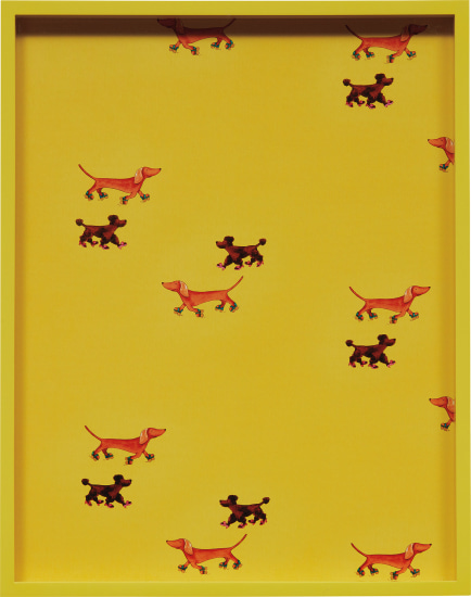 Dachshunds, Poodles