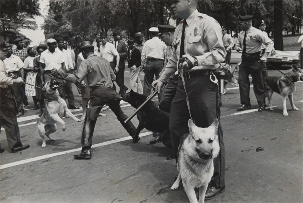 Dogs used by Birmingham, Ala. Cops to quell Negro Race Riots