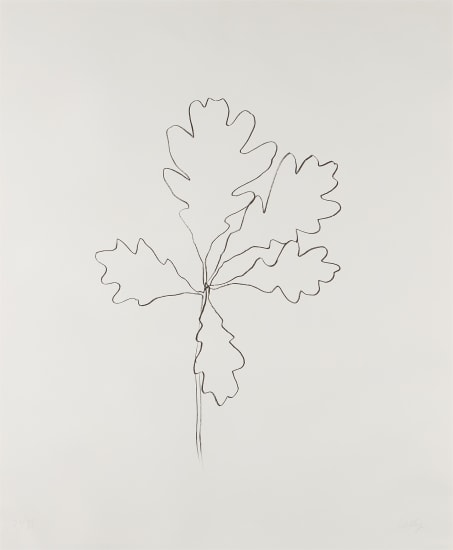 Oak I, from Series of Oak Leaves