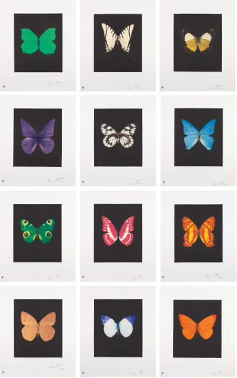 Butterfly Etchings