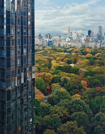 View of Central Park from the East, New York, NY