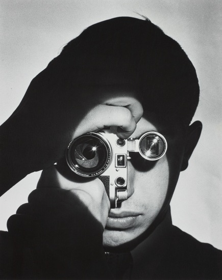 The Photojournalist (Dennis Stock)