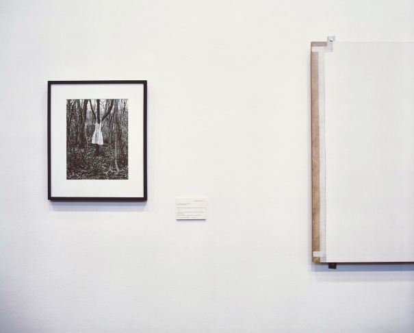 Photograph, Painting