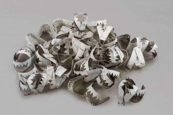 Untitled (Steel Jaws)