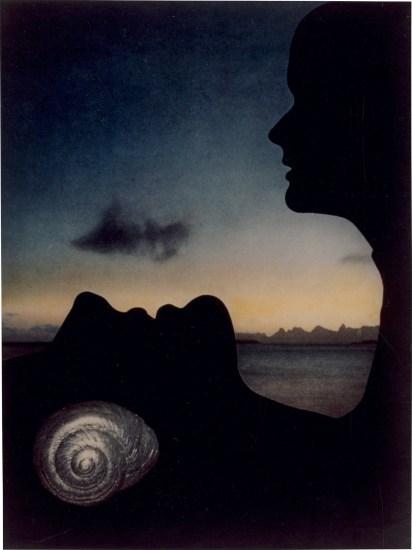 Beach Shell, Harper's Bazaar