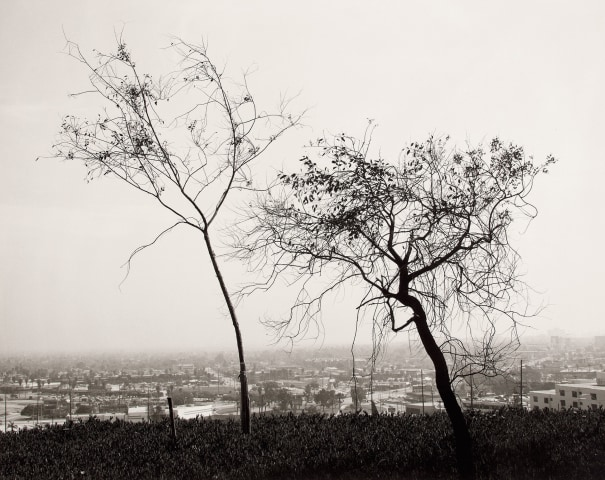 On Signal Hill Overlooking Long Beach