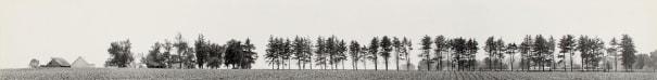 Untitled (Midwest landscape)