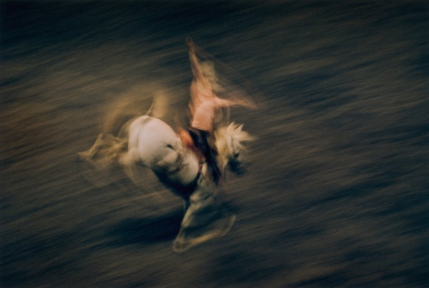 Motion Study Rodeo