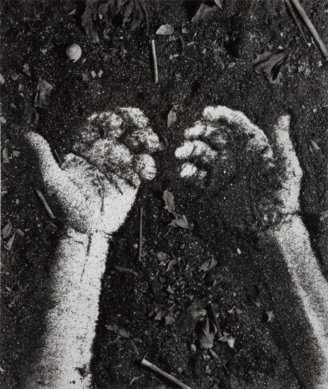 Hands from Pictures of Soil